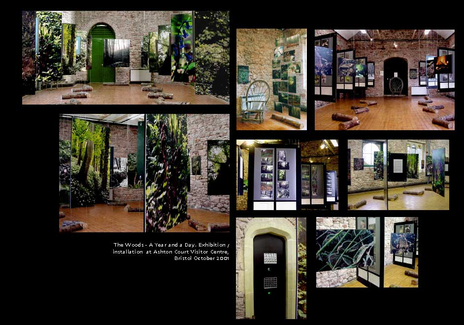 The exhhibition of The Woods - a Year and a Day, at Ashton Court VIsitor Centre, Bristol 2001