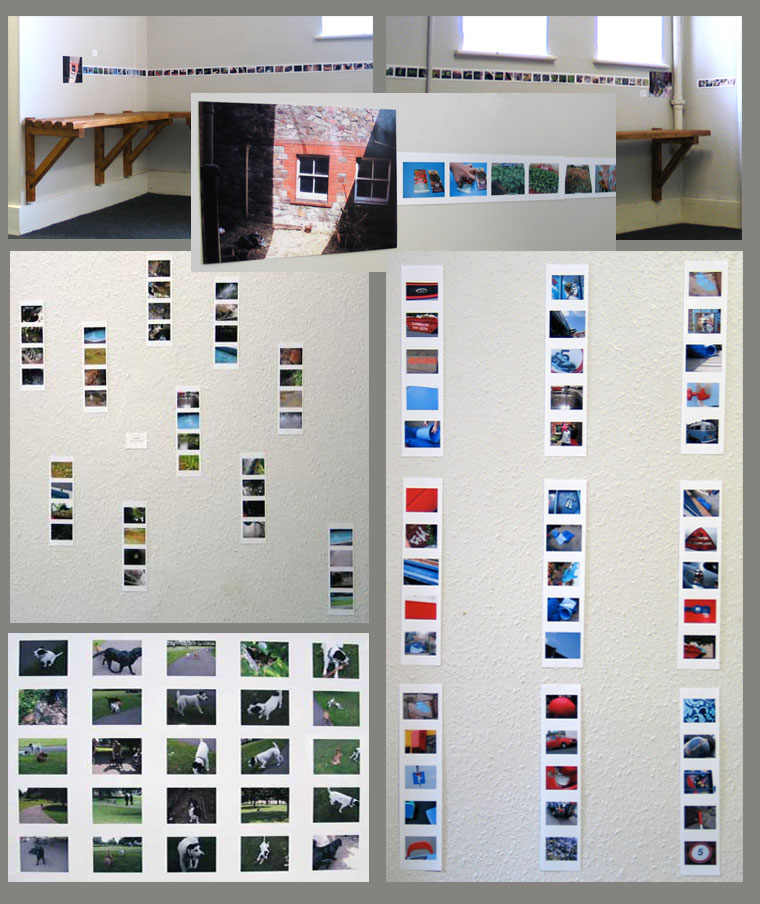 Top - a record of the Growing Jourey, below, sets of images taken by the children on themes we'd worked on with the cameras during the journeys: water, red and blue things, dogs!