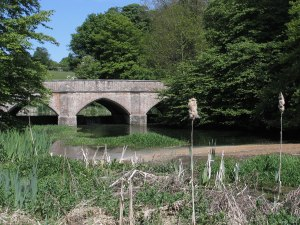 Water-End-bridge