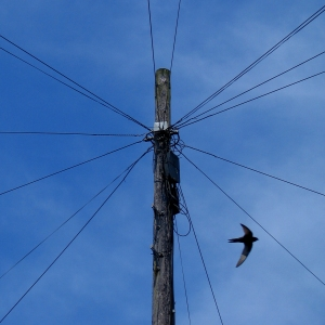 swift-and-wires
