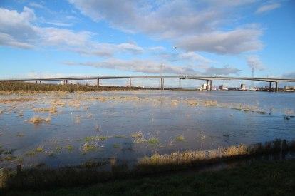 Spring tide flooding the Longshore fields