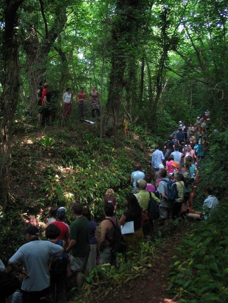 The Hill, Cadbury Camp, Yatton