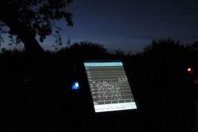 2013-moth-bat-night-3