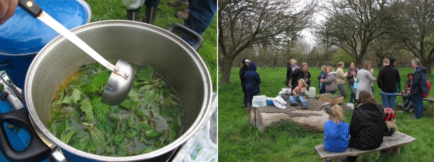 Herb discovery walk with nettle soup-making