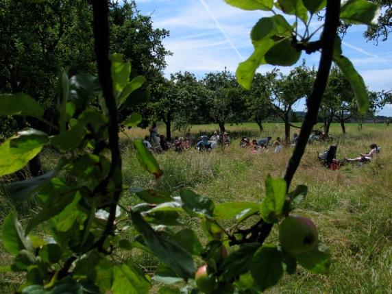 Village picnic